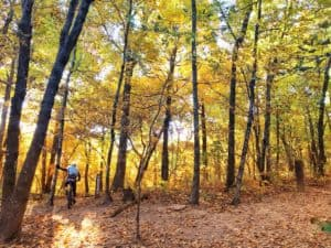 Tips For The Fall Riding Season! - Ozark Cycling Adventures, Cycling news and Routes in Northwest Arkansas NWA