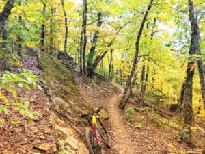 Weekend Ride Notification 11/8 | NWA Cycling News - Ozark Cycling Adventures, Cycling news and Routes in Northwest Arkansas NWA