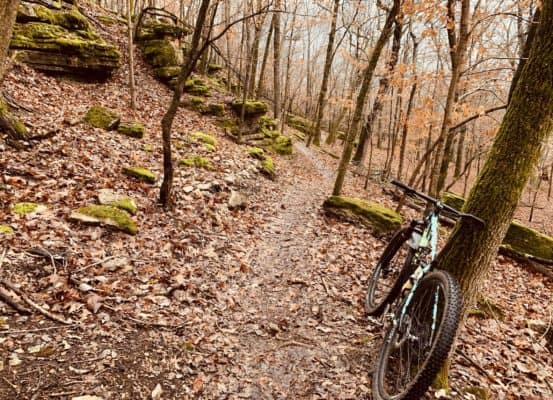 Tuesday Shorts 1/14   NWA Cycling News - Ozark Cycling Adventures, Cycling news and Routes in Northwest Arkansas NWA