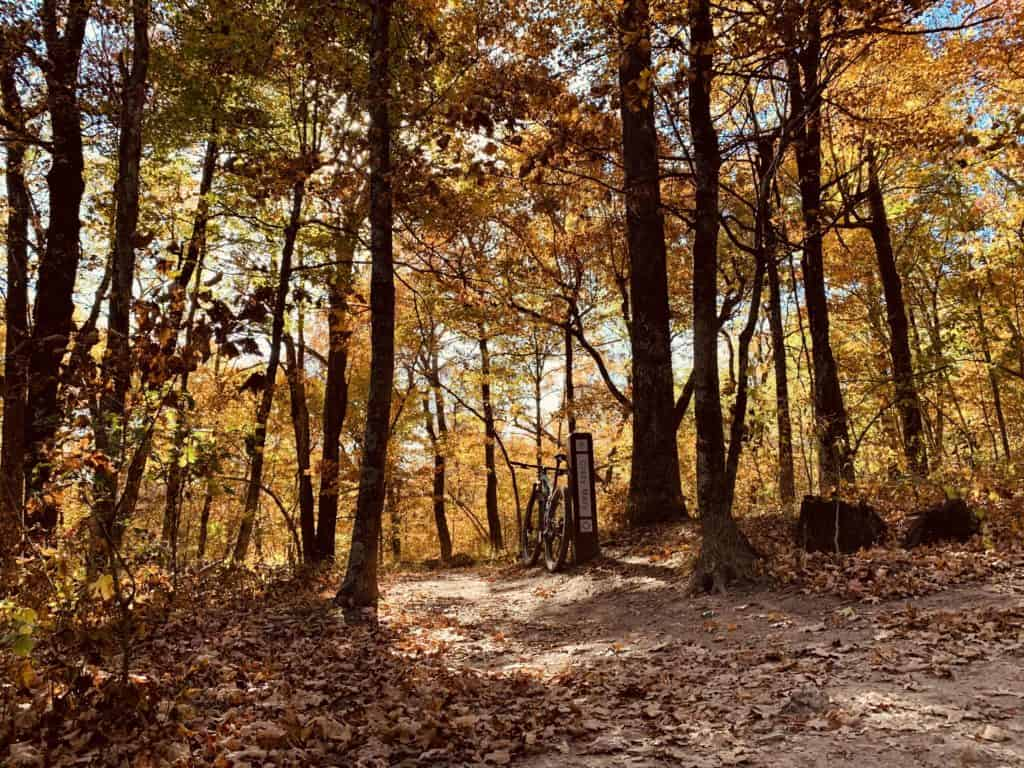 Autumn 2020 - Ozark Cycling Adventures, Cycling news and Routes in Northwest Arkansas NWA